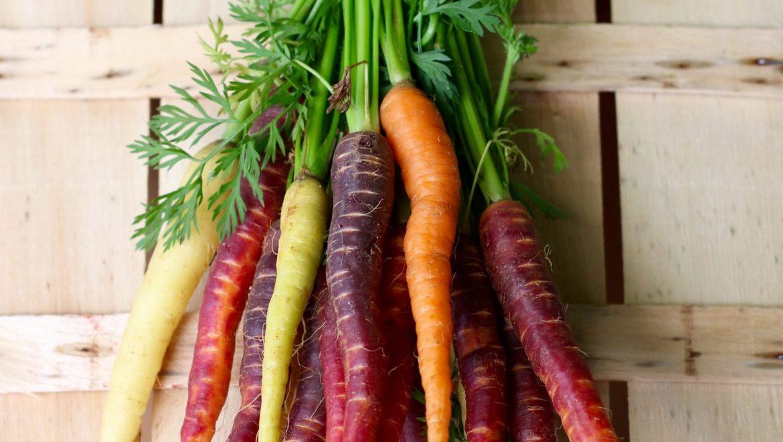 Facciamo crescere una cima di carota!
